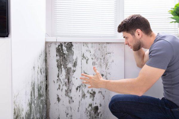 L'humidité cause de la moisissure